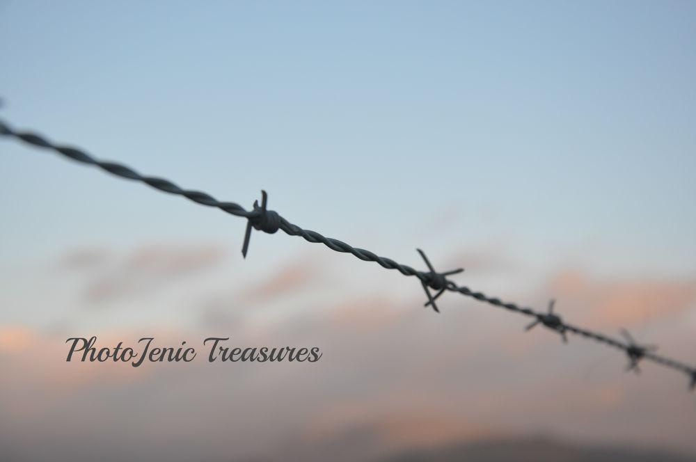 Trespass by PhotoJenic Treasures
