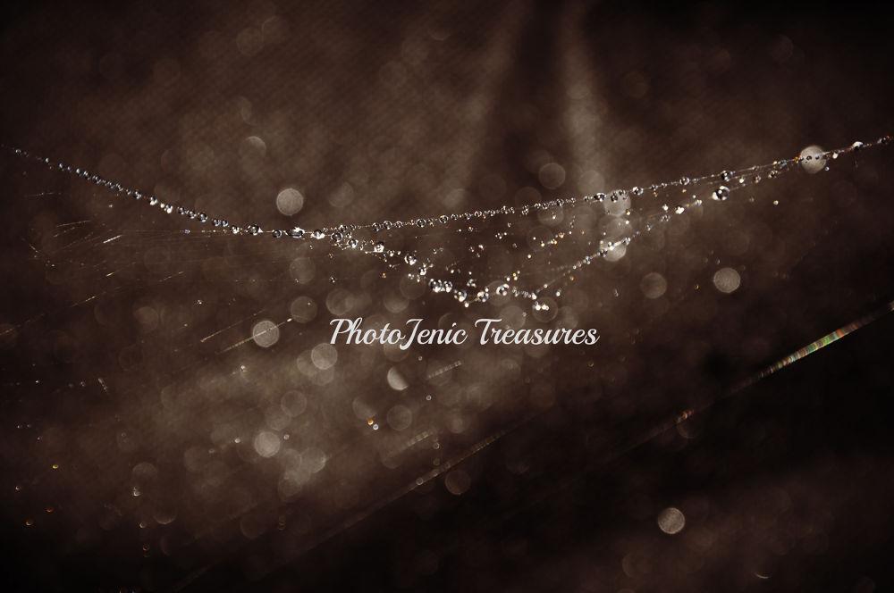 Beaded Web by PhotoJenic Treasures