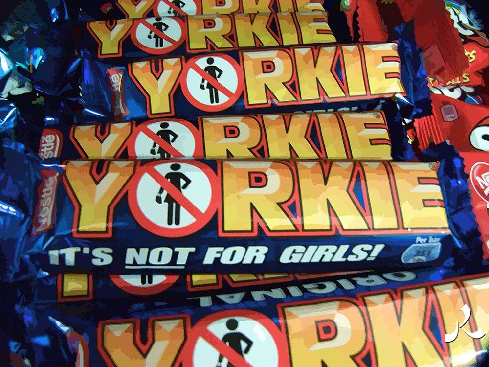 13-yorkie by jacquesraffin