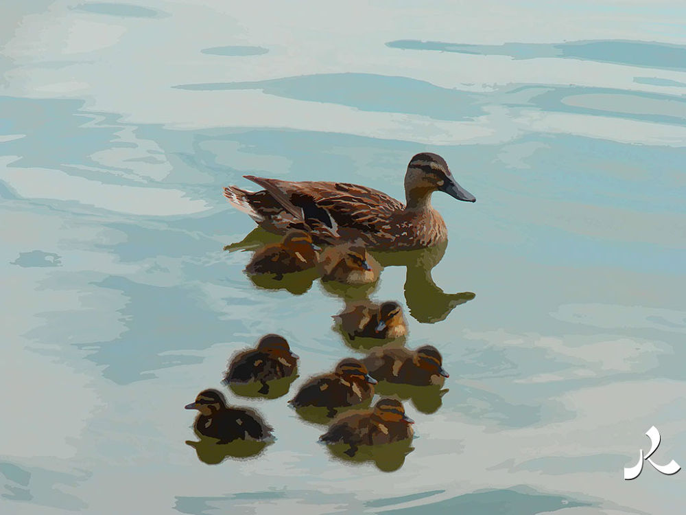 58-canards by jacquesraffin