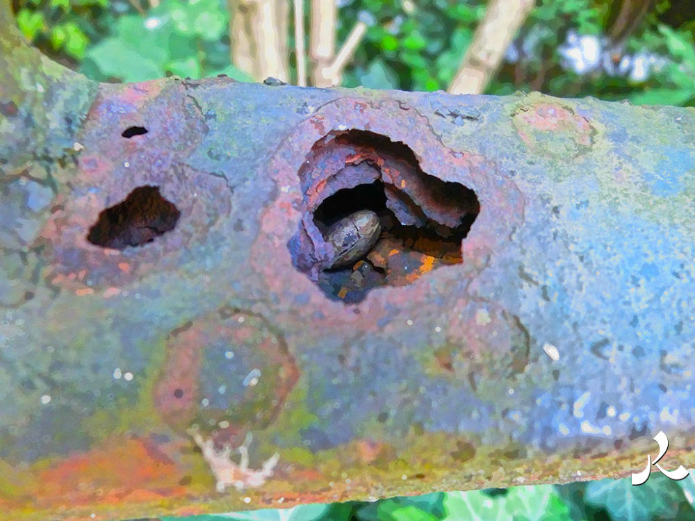 rust2holes462 by jacquesraffin
