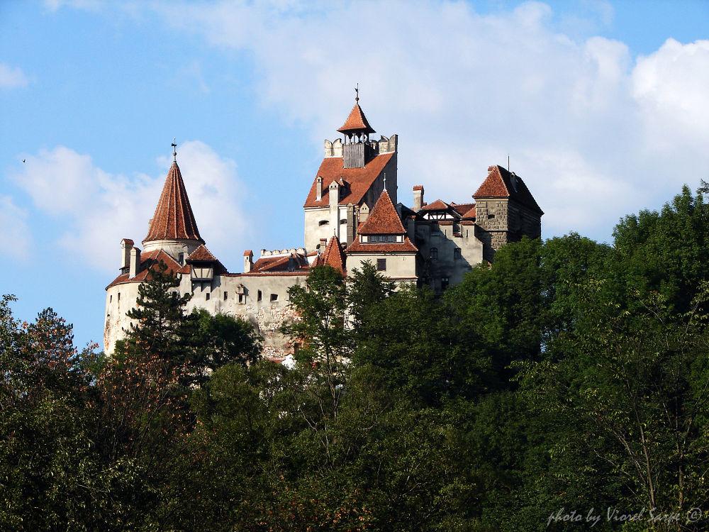 Dracula's (Bran) Castle  by viorelsarpe