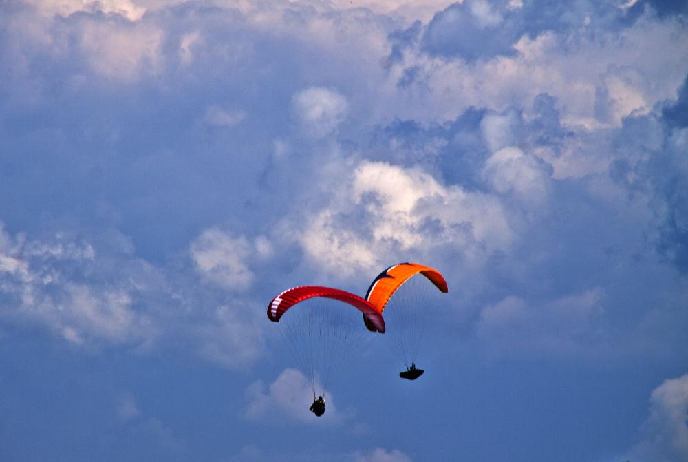 Flying together by viorelsarpe