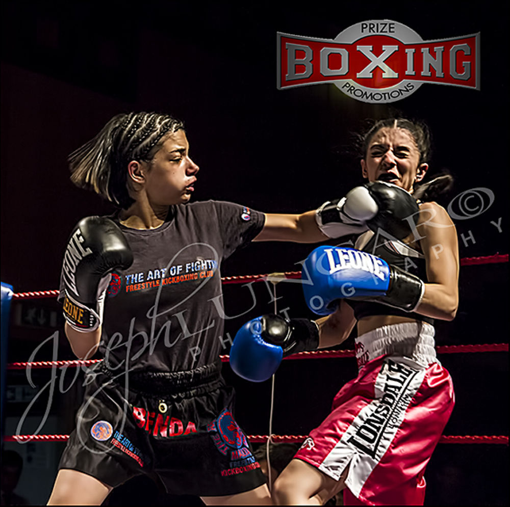 female boxers2 by lungaro1