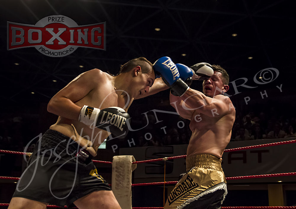 more boxing by lungaro1
