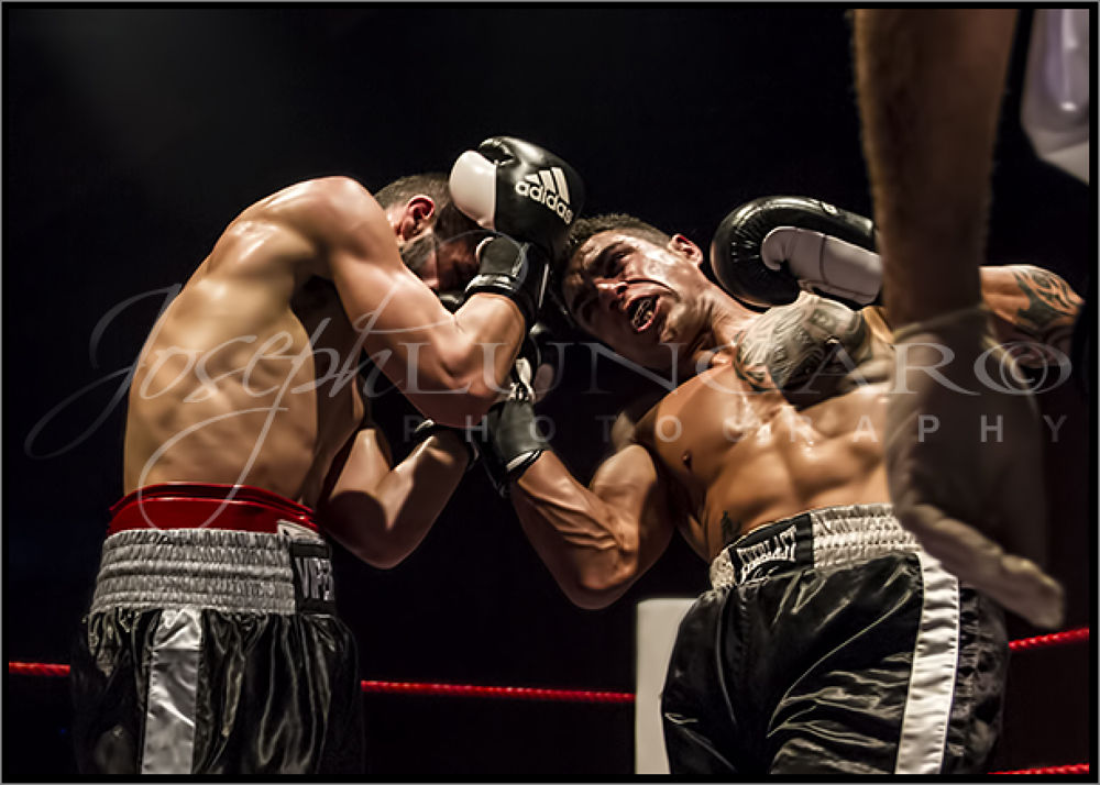 more boxing3 by lungaro1