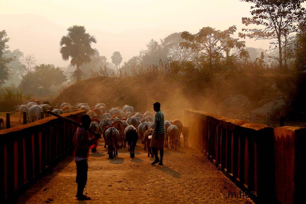 returning home... by skmanwar2013