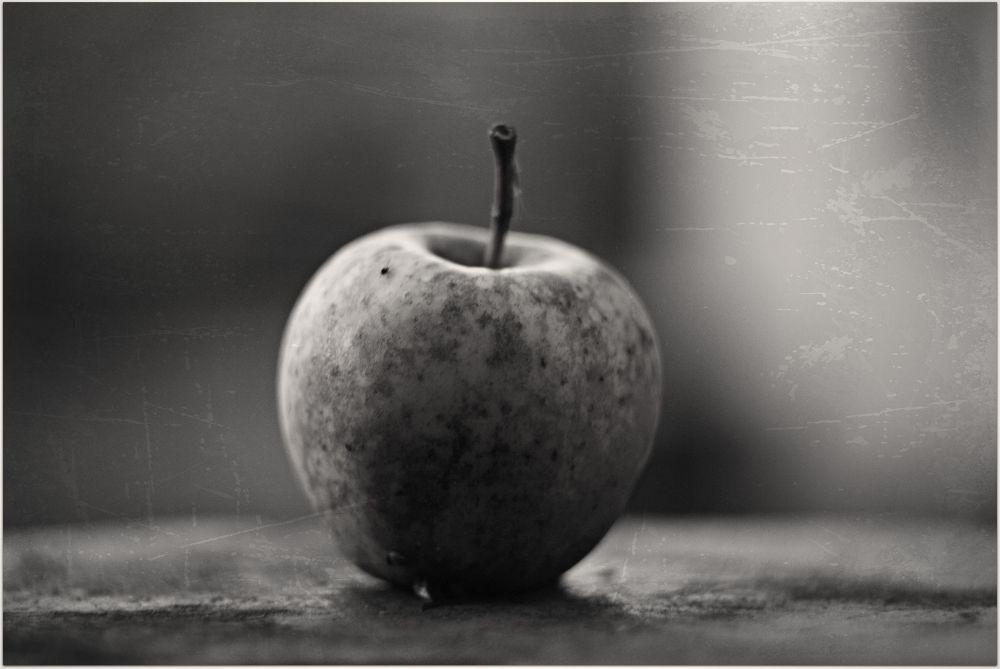 apple by Oleksii Voronchikhin