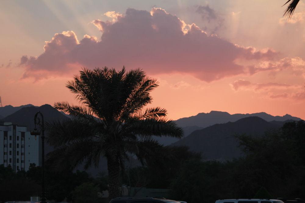 sunset by osamamohammed3304