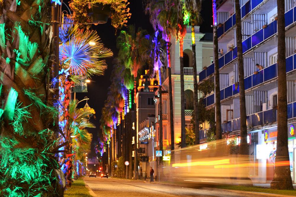 Colorfully illuminated palm trees in Batumi, Georgia (www.adventurous-travels.com) by TomL