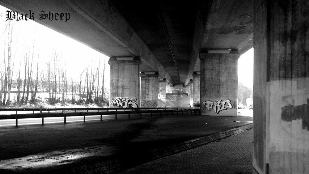 Photo in Random #brücke #bridge #under the bridge #bauwerk #black and white #schwarz weiß #schwarz #black #white #weiß #architecture #city #highway #autobahn #street #straße