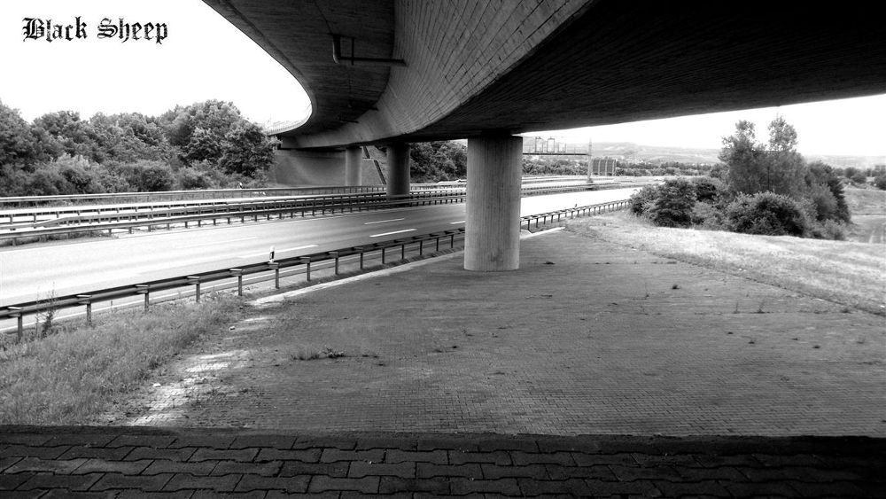 Photo in Architecture #bridge #under the bridge #brücke #bauwerk #architecture #highway #autobahn #street #city #landscape