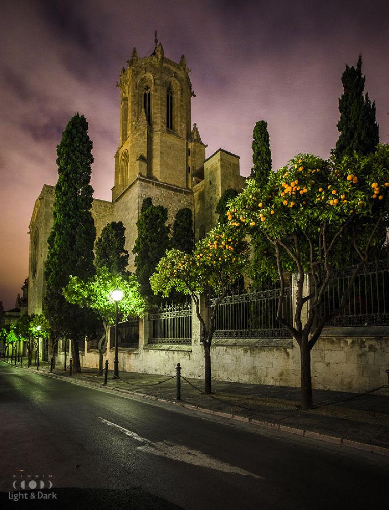 Photo in Travel #ypa2013 #spain #tarragona #gothic #orange #midnight