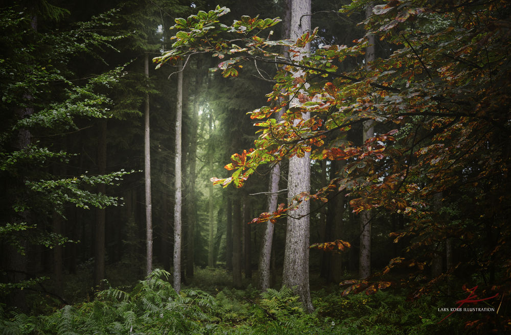 Watching Channel Autumn by Lars Korb