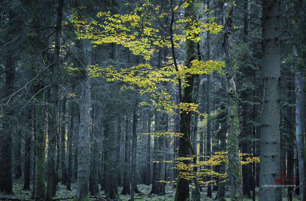 Dark Lime by Lars Korb