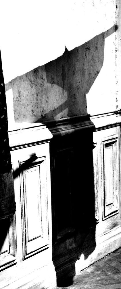 boro shadow 11 © Lea Lip by lea Lip