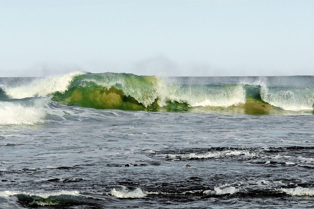 Splash of Colour by PAUL (PaddyPoet) BMJ LOFTUS