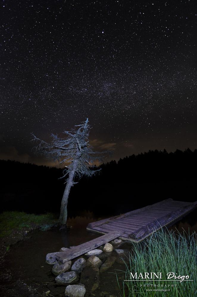 Ciel ostellato al lago di Tret by dieguz86