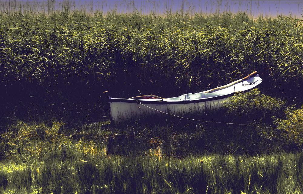 lake by sonmez