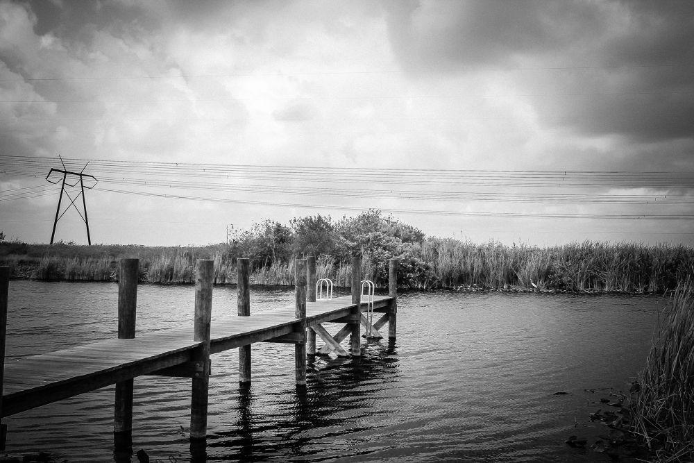 /// Florida Everglades \\\ by pabloavila100046