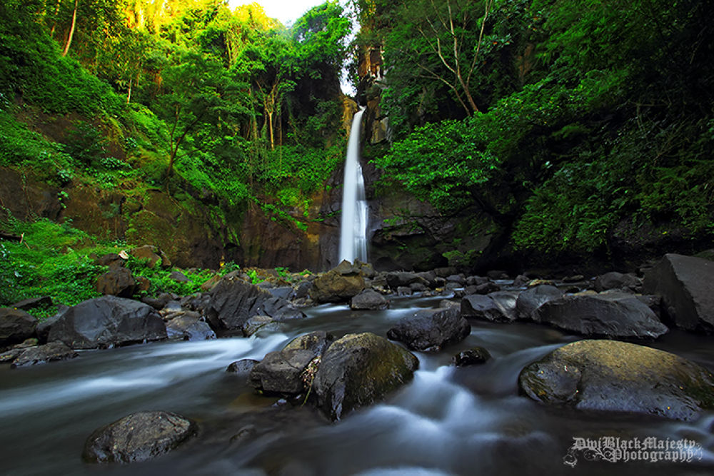 Photo in Nature #waterfall #nature #landscape #water #@bali
