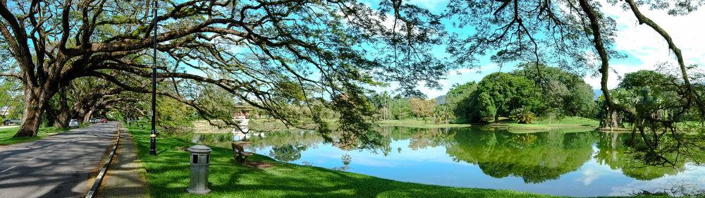 Taping Lake Garden by amirhamzahabdulshukor