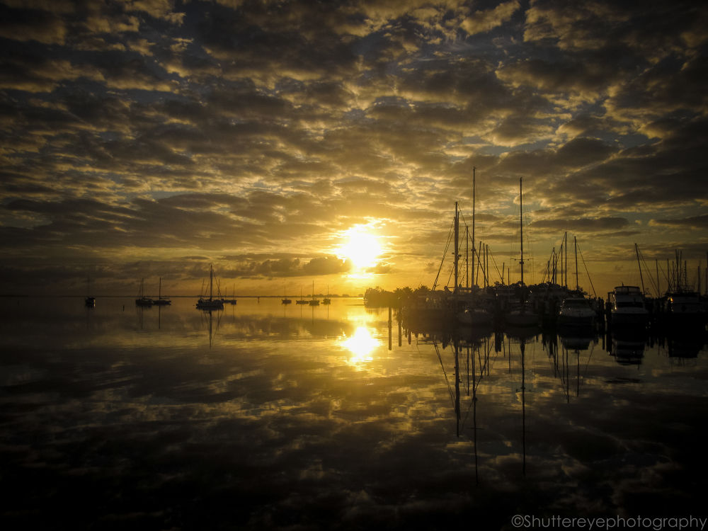 Reflections by JohnnyCortes2013