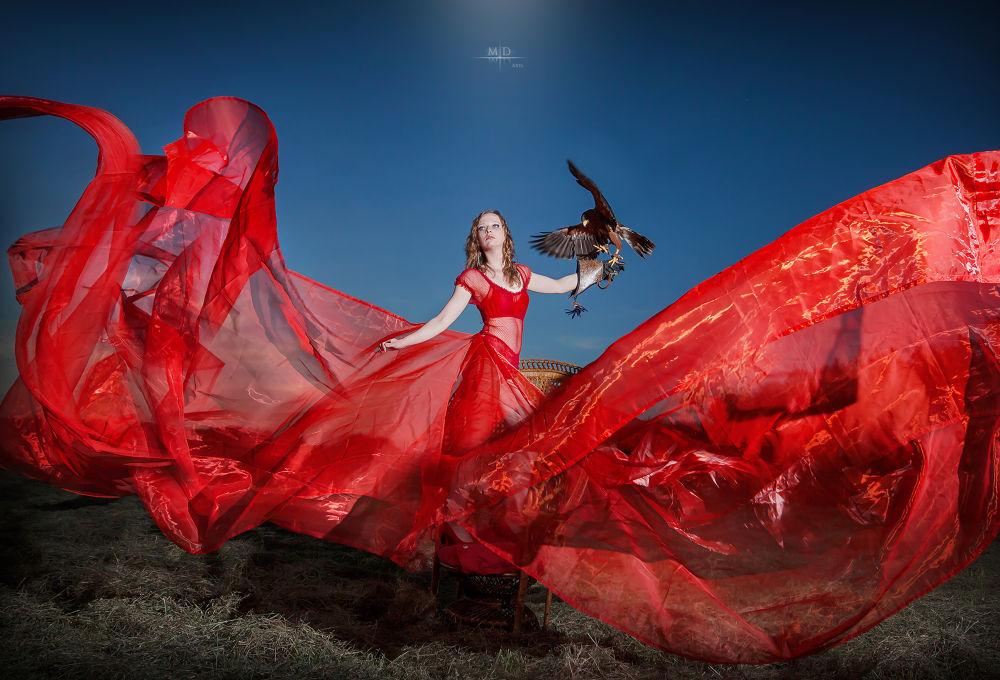 Queen of the Sky by M.D. Art
