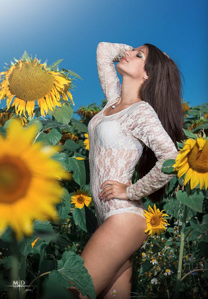 Sun Flower by M.D. Art
