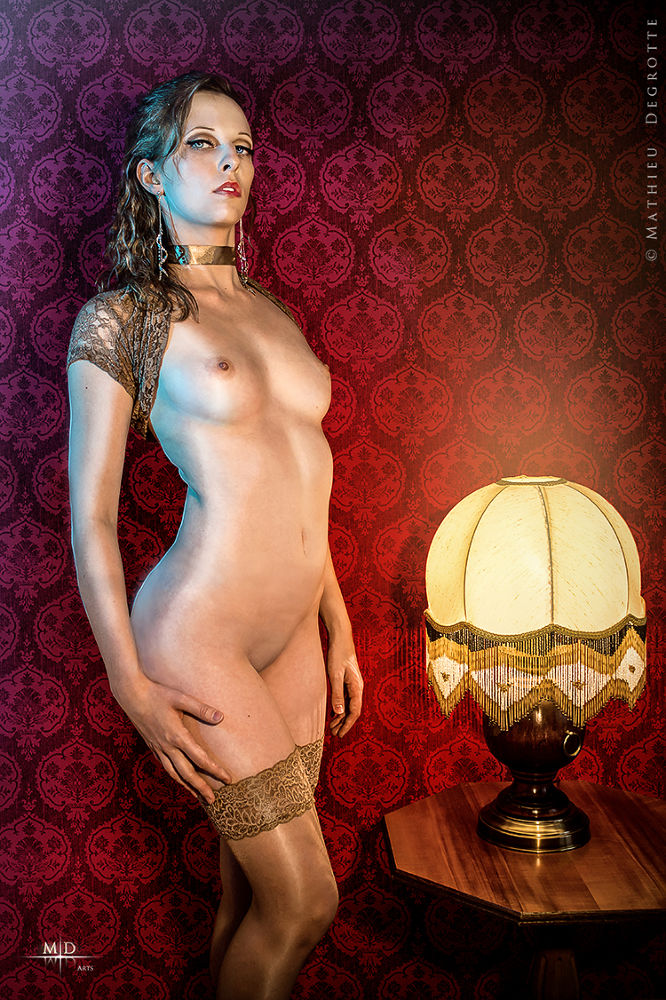 Photo in Nude #girl #beauty #naked #stockings #lingerie #red #boudoir #victorian #princess #noble #haughty #look #standing #thighs #bosom #tapestry #lamp #light #gold #texture #golden #jewels #collar #brunette #french #nude #art #emotive #bedroom #room