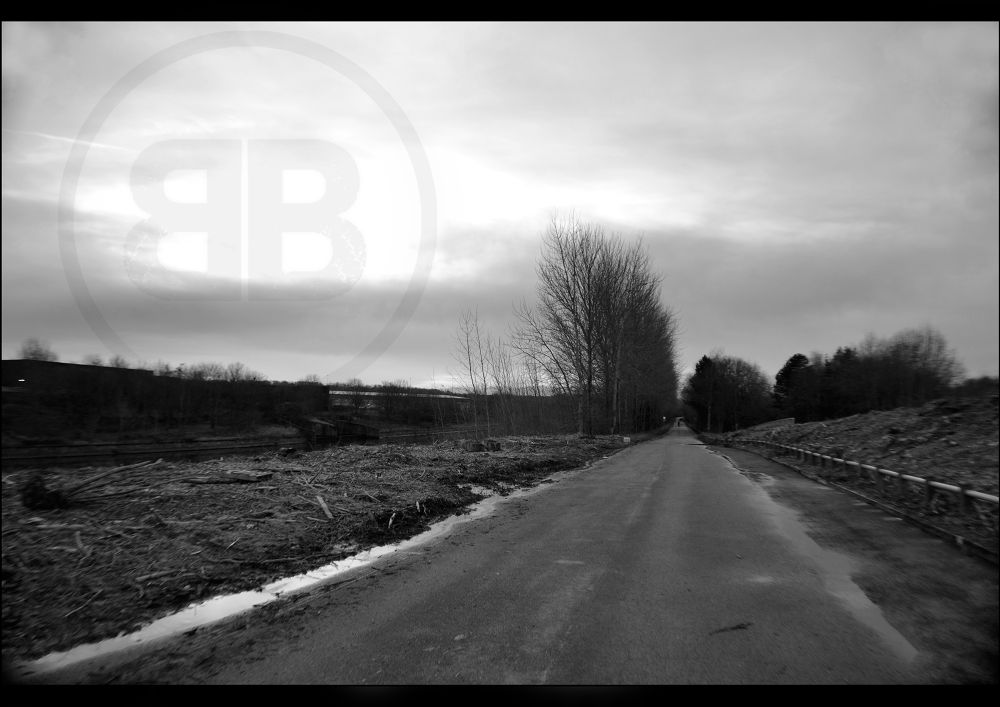 Photo in Black and White #lonely #road #dirt #track #black #white #runcorn #cold #path #untied #kingdom #england #tree #puddle