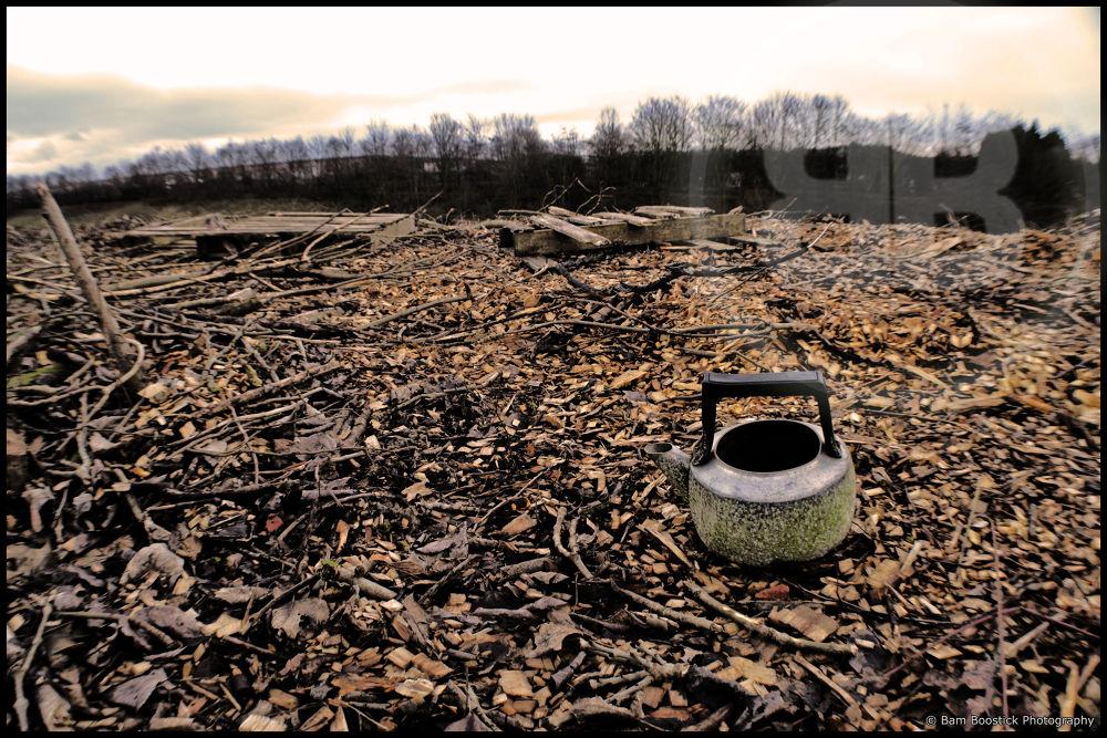 Photo in Random #retro #sepia #old #kettle #bark #chip #forest #wigg #island #runcorn #united #kingdom #england