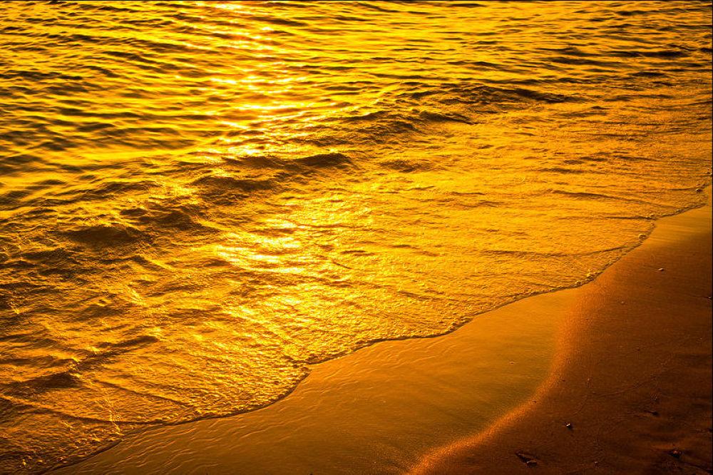 golden sea by volkswagonX