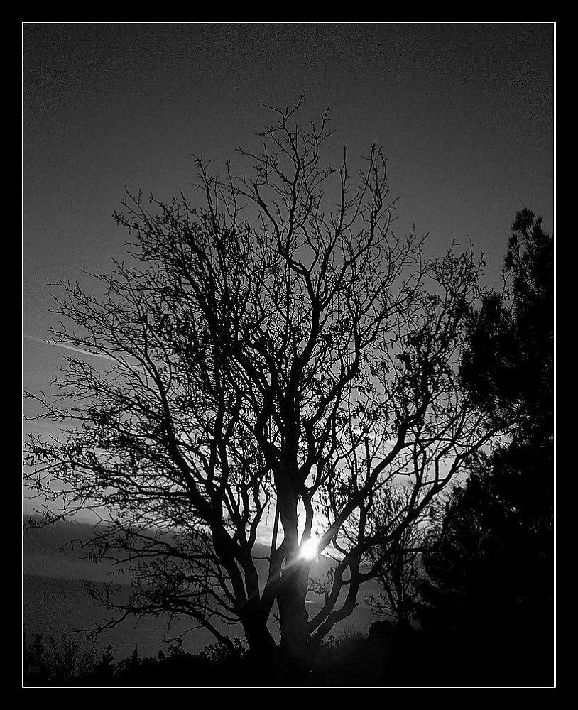 Sunset. by Anatoly Lobko