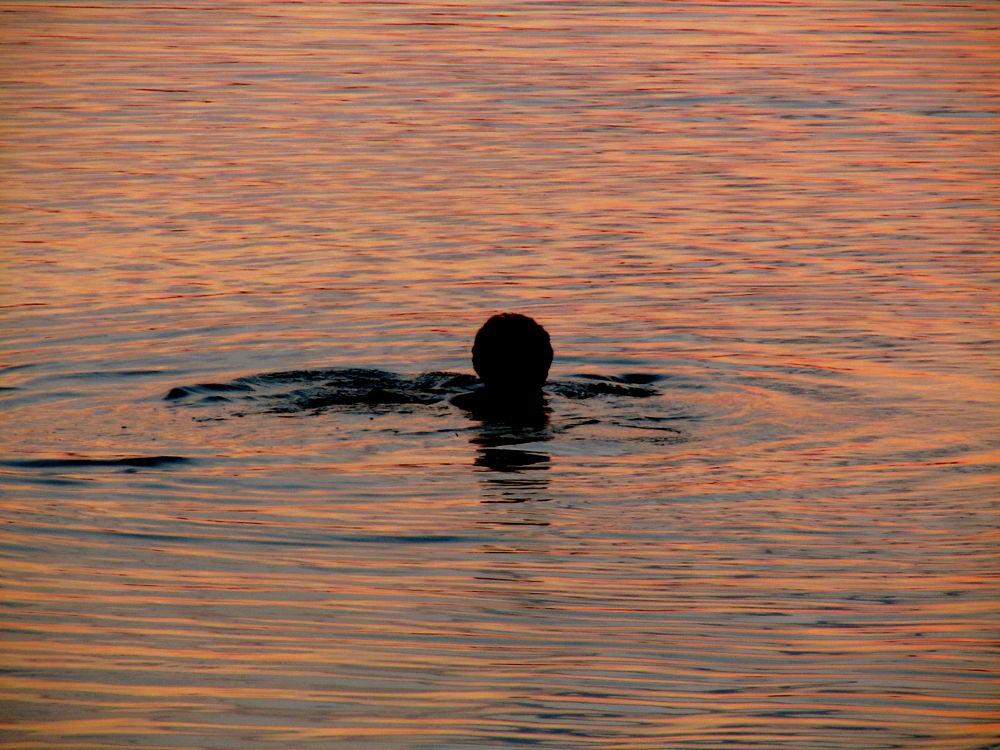 Купание в золоте. Swimming in gold. by Anatoly Lobko