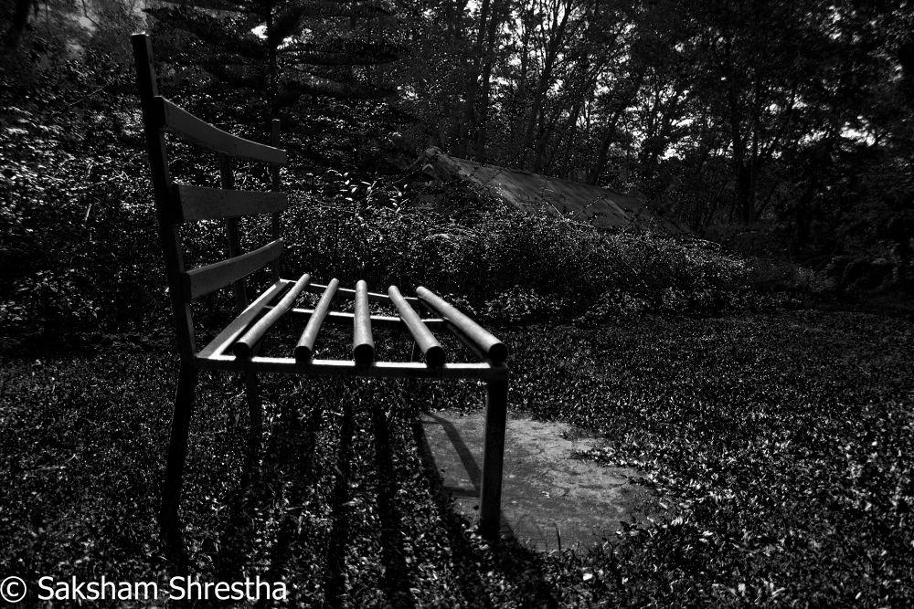 Empty bench  by saksham7