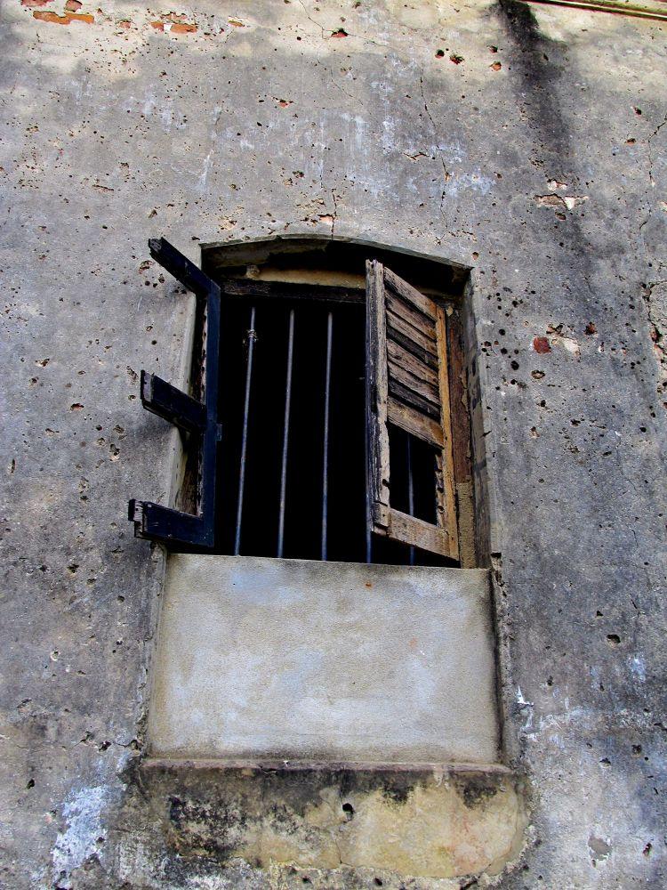 Photo in Random #heritage window