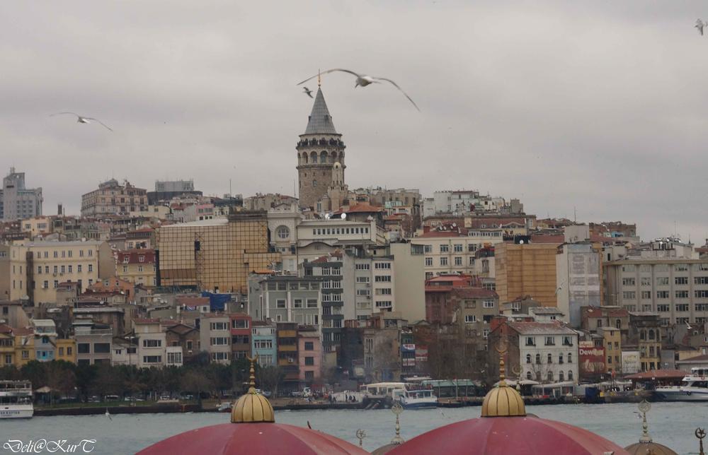 Photo in Random #istanbul #istambul #turkey #turkish #life #love #night #ypc2013 #turkia