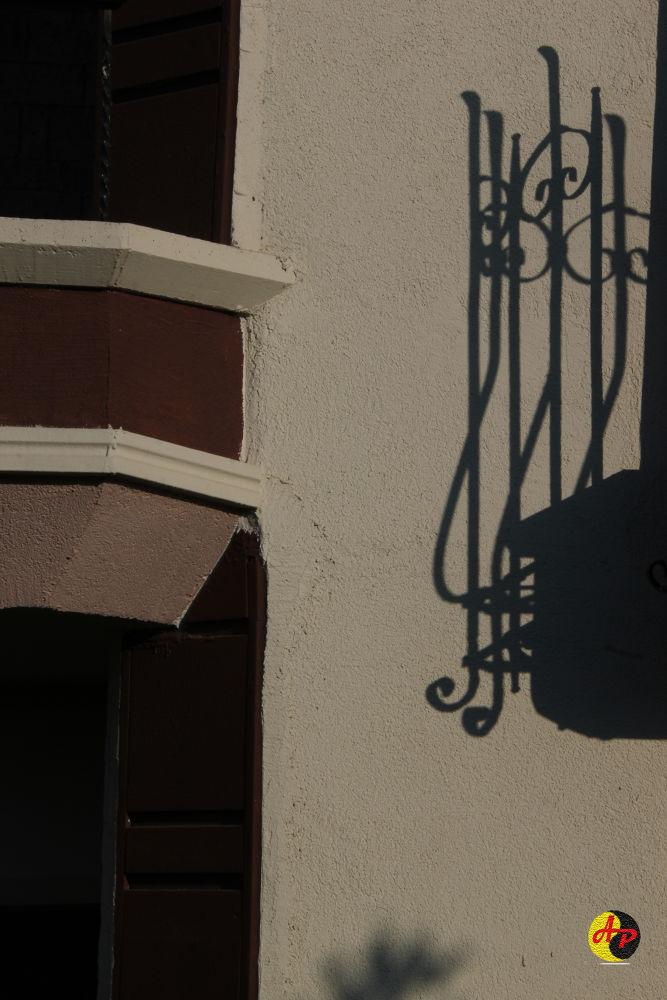 Shadow by aliz