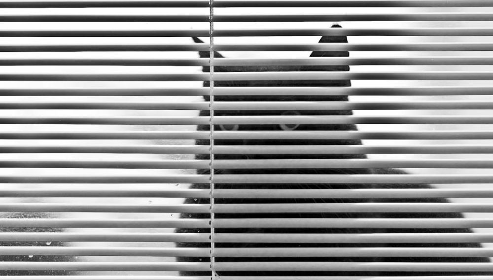 Il Cavaliere Oscuro by Luca Belogi