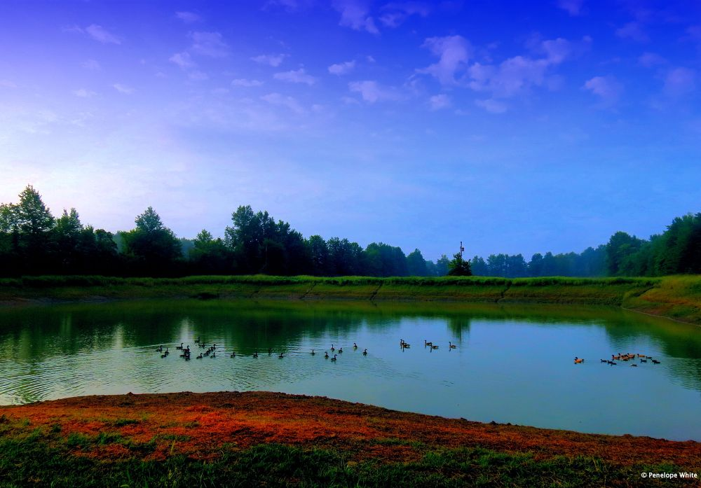 Morning splendor by pennieawhite