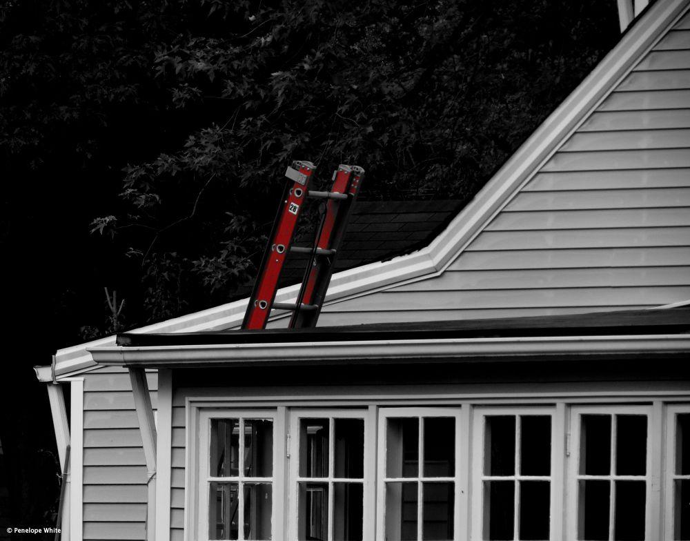 Fire Ladder by pennieawhite