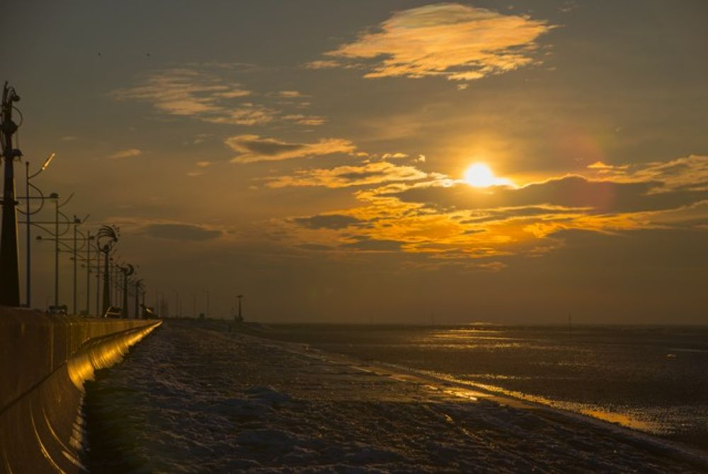 IMG_2375 by AndyHarrison