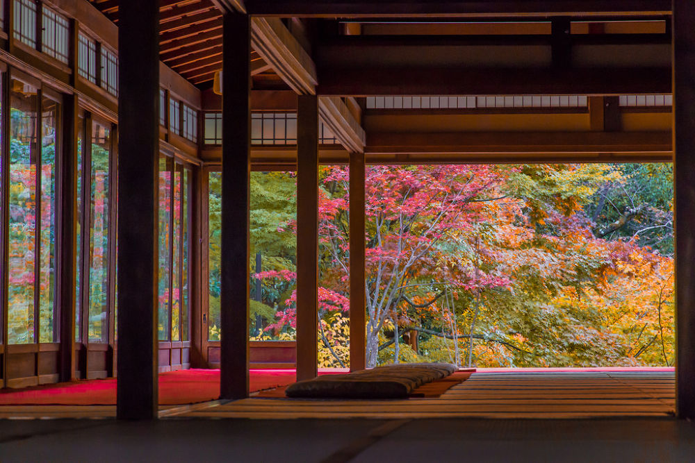 Photo in Landscape #japan #kyoto #ypa2013 #leaves #autumn