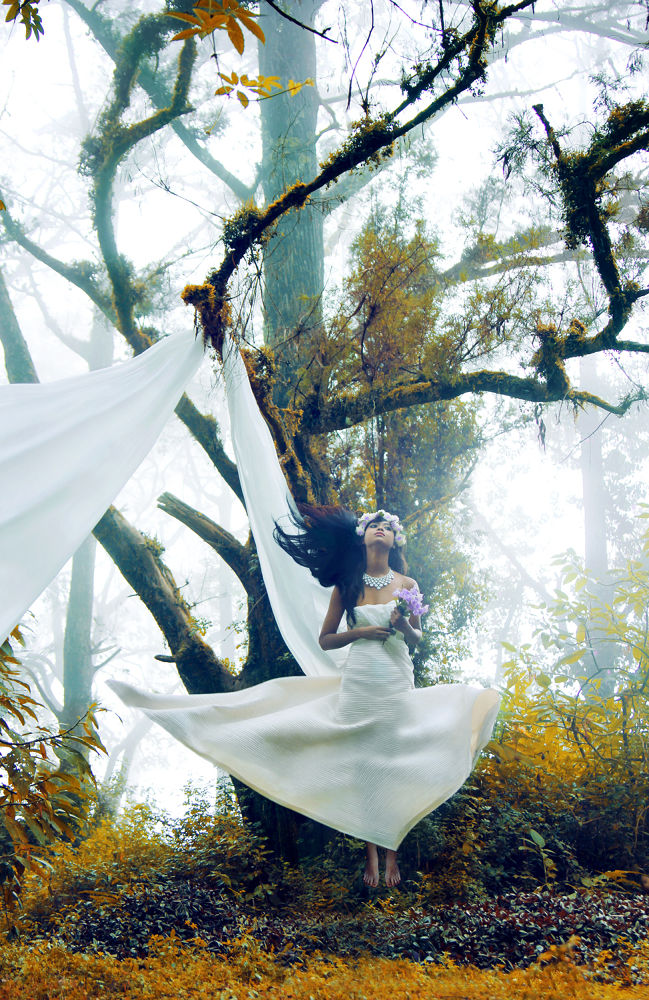 Photo in Random #ypa2013 #fairytales #fairy #fantasy #forest #tree #gown #hair #flowers #fog #photocritique