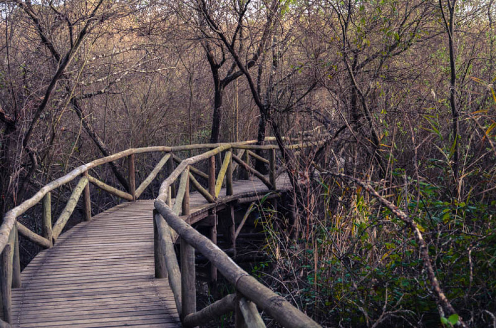 Cae el otoño en Doñana by Pablo Pazos