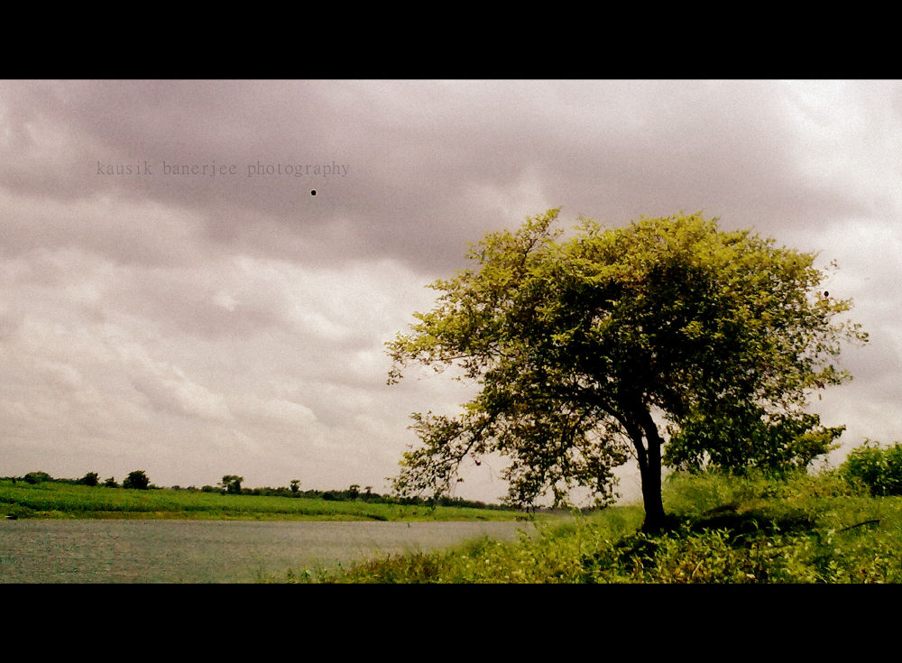 kausik banerjee photography by Kausik Banerjee