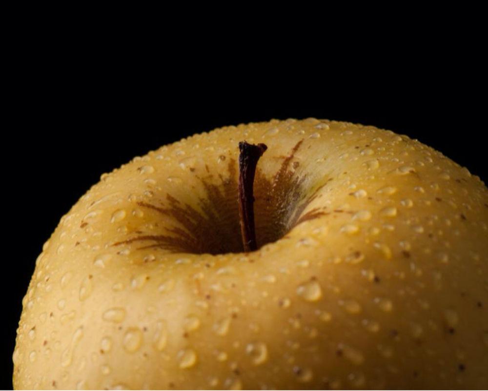 apple by Ori Livney
