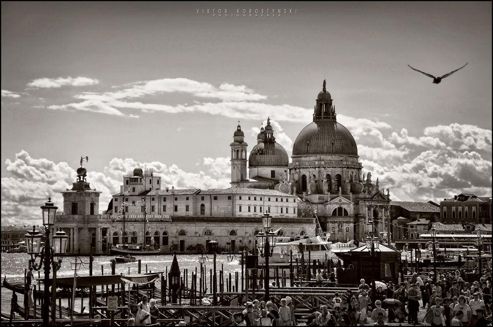 Venice. by vikkor