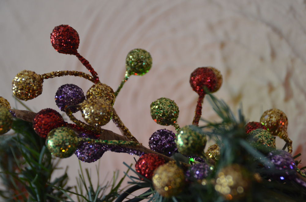 Christmas berries by jackiwright16